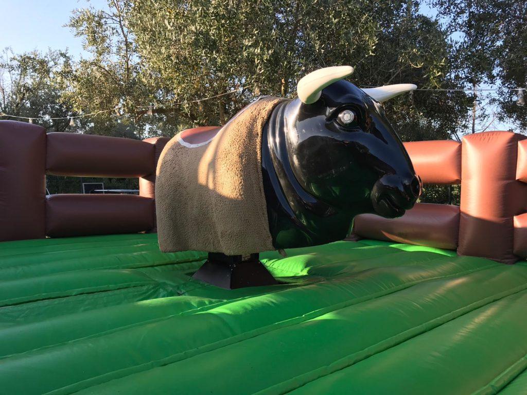 Noleggia il tuo toro meccanico