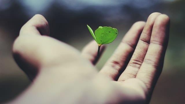 Formazione e crescita personale