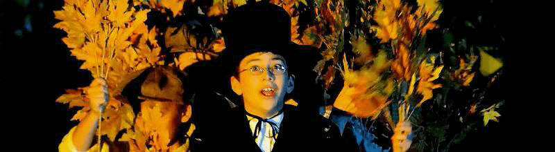 Festa Halloween: magia a tema