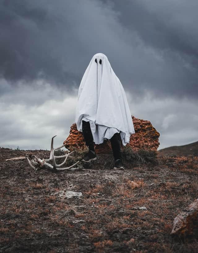 Fantasma costume